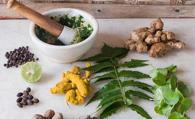 Was niemals in der ayurvedischen Küche fehlen darf: frische Kräuter.